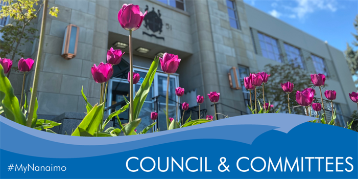 Council and Committee header image