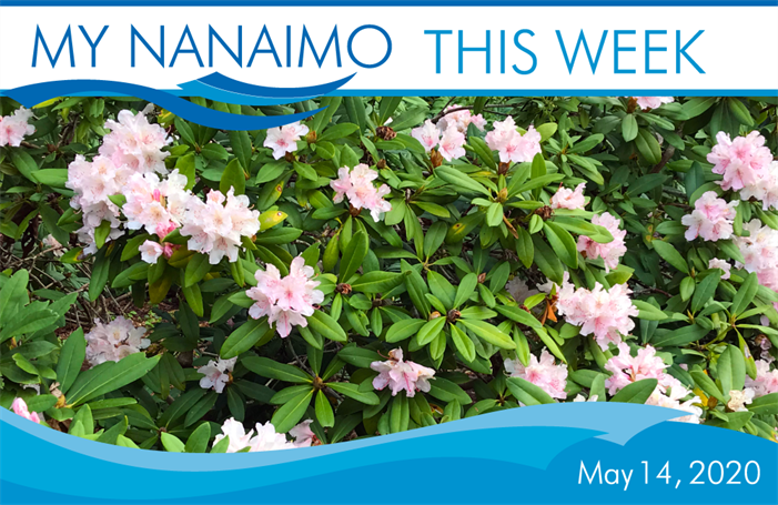 MyNanaimo-Header-May-14