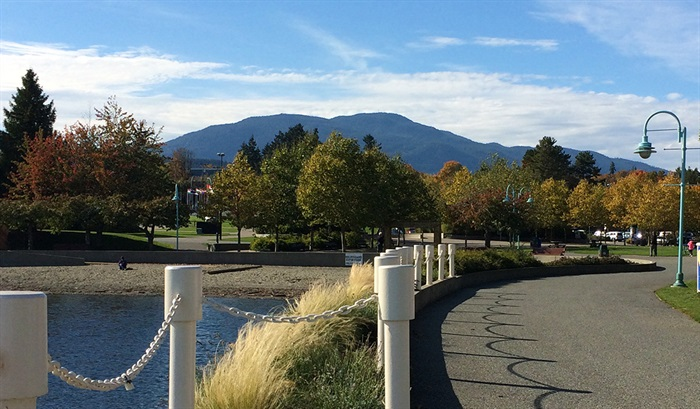 A look at Mount Benson from Maffeo Sutton Park