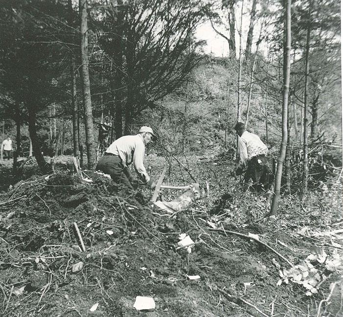 Bowen Park Rotary Project Clearing Bush 1953